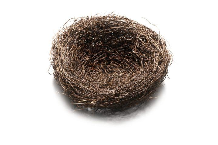 10 - The Bird's Nest