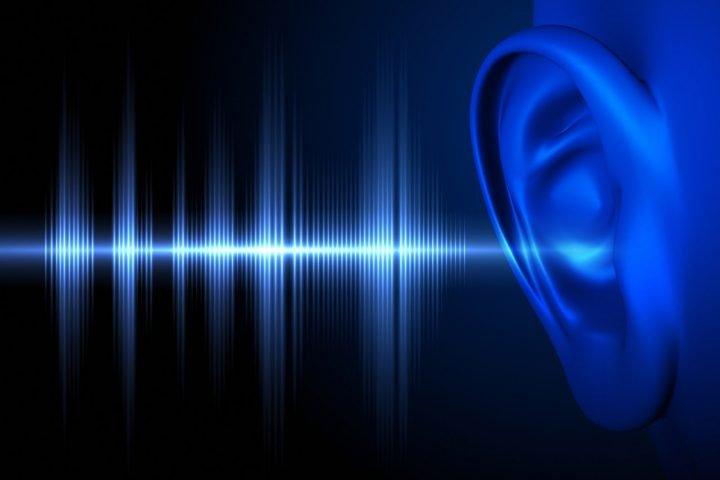 3. Sound Level Stoplight